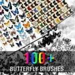 100+ Butterfly Brushes by Z4m0lx3