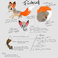 Fuechsel - Closed Species by JB-Pawstep