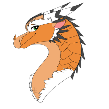 Hoopoe Headshot Contest Prize by Sahel-Solitude