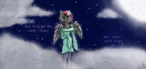 I Won't Forget You by crazyH8