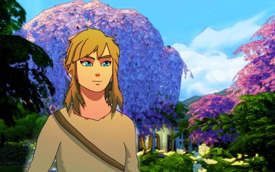 Link Breath Of The Wild by NarutoTheSims