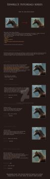 Hair Tutorial by Idhrill