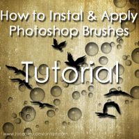 How to Instal + Apply Brushes by Lune-Tutorials
