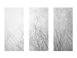 5.52 - a mist makes things wonderful. by awfultosee