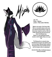 Miyoko Ref by Chebits
