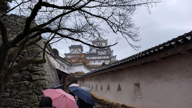 Soggy Himeji by the3dman