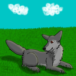 In the grass by Wolf--Prime