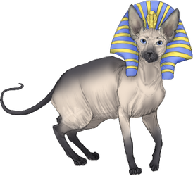 Ramses the Great by Free-Like-The-Wind