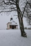 First Snow Stock 11 by Malleni-Stock