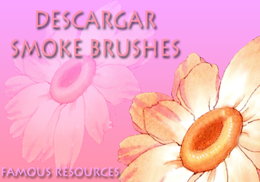 21 Smoke Brush by FamousResources