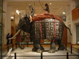 War elephant 1 by Random-Acts-Stock