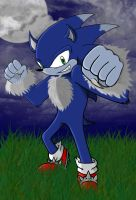 Sonic The Werehog by mimichi1234312