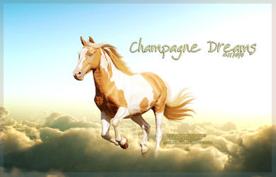 Champagne Dreams by WhiteRozePetals