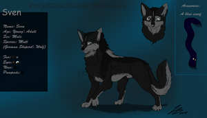 Sven -Ref.Sheet- by Canis-Sum