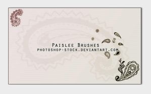 Paislee Brushes by photoshop-stock