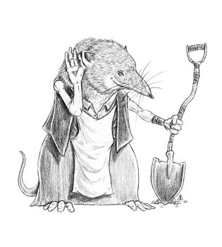 Commission: Shrew, Concept Art by AndrewDeFelice