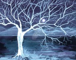 Ghost Tree by aragonia