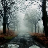 Silent Hill by Papierowemaki