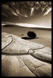 Death Valley by Notoriouscadi