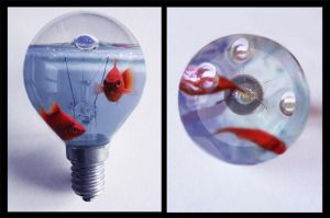 FishBulb by VioletEvans
