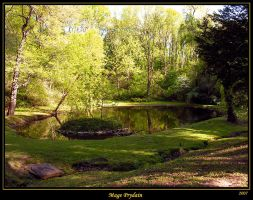 Secluded Pond by David-A-Wagner