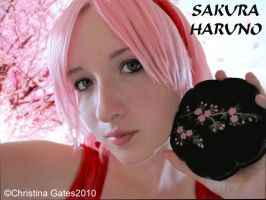 Sakura,flowers, and bento by broken-with-roses