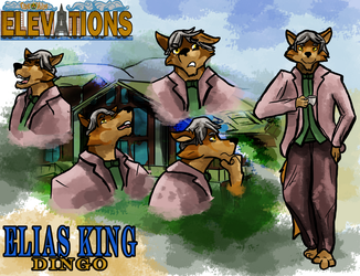 Elevations Sheet: Elias King by MikeFolf