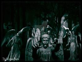 The weeping angels by jradart