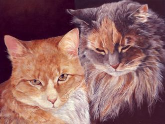The Two Cats by asemo