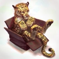 Cat in a Box- Painted by TehChan