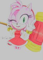 Amy Rose (Project) by LazyDuck32