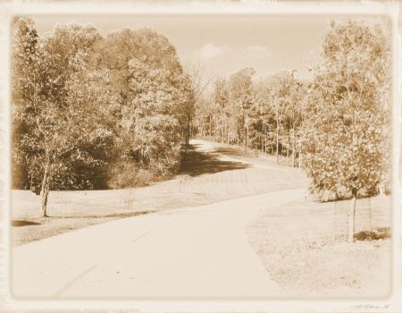 Over Yonder (sepia) by crazywriterchic