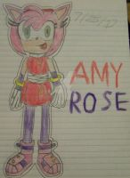 Amy Rose (Request) by Erik-the-Okapi