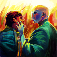 Harry Potter and Voldemort by cactusrain