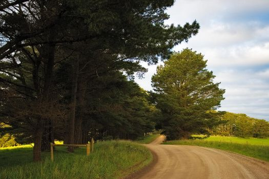 Country Road by bjstevens