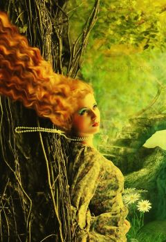 Fairy-tales of the magic fores by Swdream