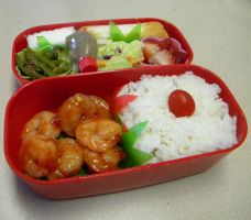 Bento Lunch by Demi-Plum