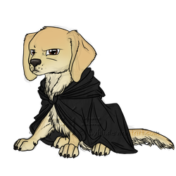 Darth Pupper by LyhliTheLuminescent