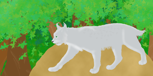 Lynx in the Forest by Kenekochan01