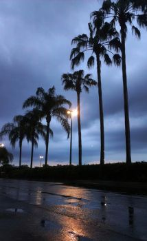 One rainy night in Florida. by kellock