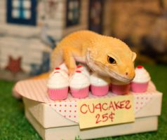 Lucille's Bake Sale - 1155 by creative1978