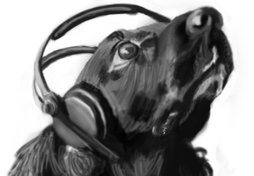 Dog with headphones by fserb