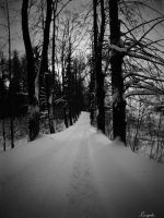 Road to nowhere by Luczynka