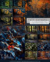 Fall Colours - Free Lightroom + CameraRAW Presets by kuschelirmel-stock