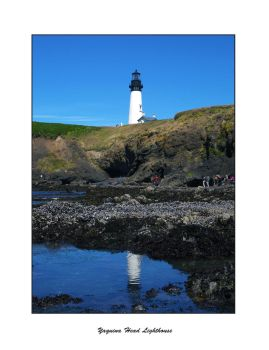 Yaquina Head Lighthouse by mikepaul1