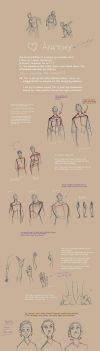 Love Anatomy - HP by Forbis