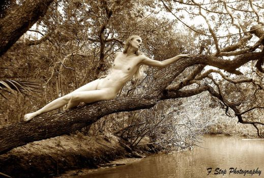 Out On A Limb by AngelleDeGuerre