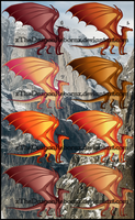 SkyWing Adopt 3-5-17 [ALL SOLD] by xTheDragonRebornx