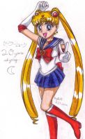Sailor Moon 20th Anniversary by SailorMoonAndSonicX