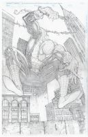 Spidey Splash by ScottJc